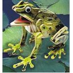 Frog - Colored 3D Jigsaw Woodcraft Kit Wooden Puzzle