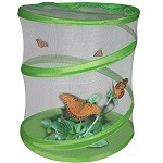 Green Earth Butterfly Life Cycle Learning Kit - Science Toy