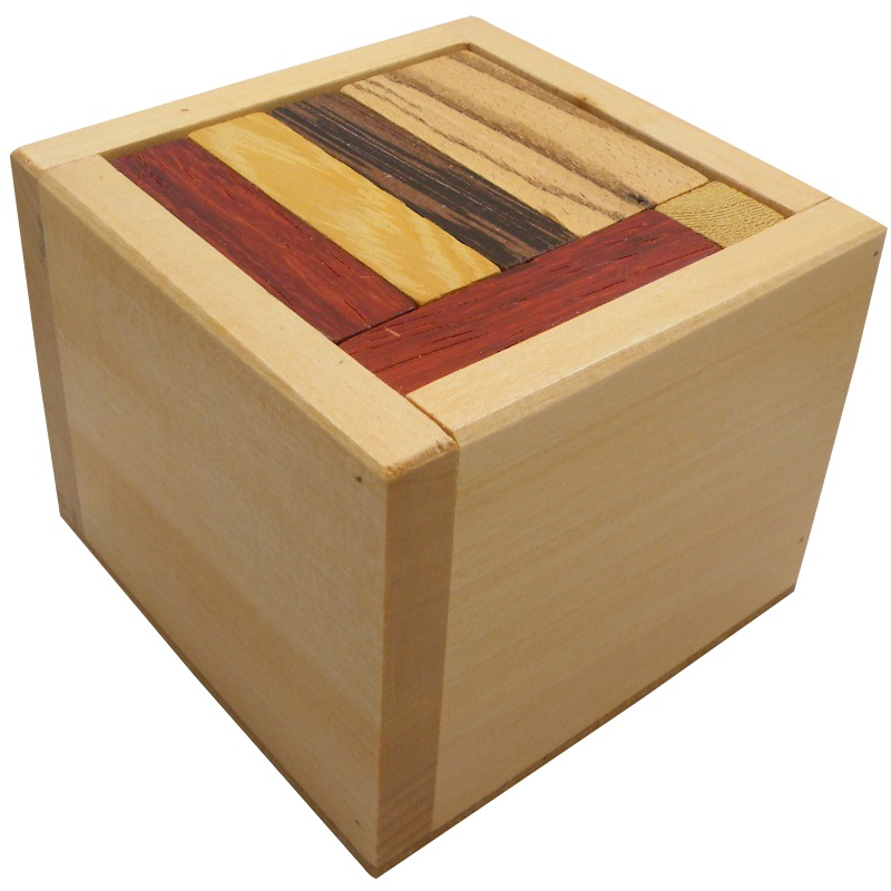 Iq 18 Packing Problem Wooden Puzzle